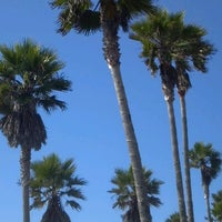 Photo taken at Fiesta Island by Tammy W. on 1/21/2013