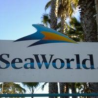 2/24/2013 tarihinde Tammy W.ziyaretçi tarafından SeaWorld San Diego'de çekilen fotoğraf