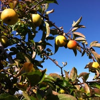 Photo taken at Applewood Orchards & Winery by El D. on 10/20/2012