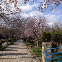 Photo taken at Açık Hava Parkı by Hatice G. on 2/28/2016