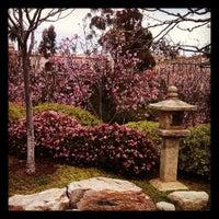 Photo taken at Japanese Friendship Garden by Jolie N. on 3/9/2013