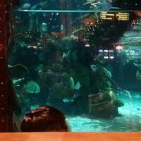 Photo taken at Mermaid Lounge by Carl R. on 11/16/2014