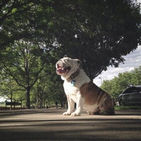 7/10/2015 tarihinde Jude T.ziyaretçi tarafından Commons Park'de çekilen fotoğraf