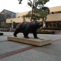 รูปภาพถ่ายที่ UCLA Bruin Statue โดย Roxanne R. เมื่อ 12/9/2012