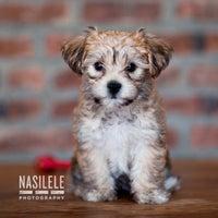 Photo taken at Nasilele Photography Studio by Nasilele P. on 7/7/2013