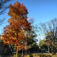 Photo taken at The Fourth High School Memorial Park by Kimi L. on 12/3/2012