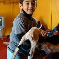 Photo taken at مزرعة جاسم العجيل by Mesh3al A. on 1/14/2015