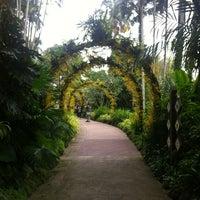 Das Foto wurde bei National Orchid Garden von Sang Hyuk L. am 1/25/2013 aufgenommen