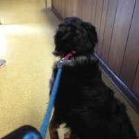 Photo taken at Jacksonville Animal Hospital by Dianne H. on 4/2/2013
