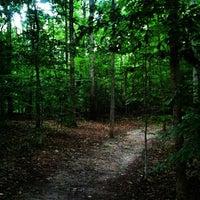 รูปภาพถ่ายที่ Rock Creek Running Trail โดย Megan W. เมื่อ 8/6/2013
