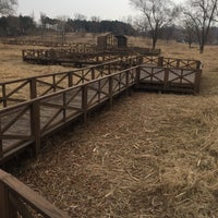 Photo taken at 안산호수공원 by luogo segreto on 1/20/2018