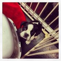 Photo taken at Downtown Dog Lounge by Matthew L. on 2/3/2014