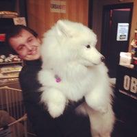Photo taken at Downtown Dog Lounge by Matthew L. on 2/15/2014