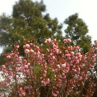 Photo taken at 斜塘公園 by CT H. on 4/4/2013