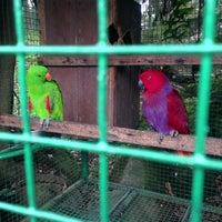 Photo taken at The Animal Farm by Gordon C. on 5/12/2013