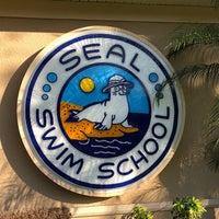 Снимок сделан в Seal Swim School пользователем steve m. 3/5/2018