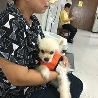 Photo taken at Suwanchard Pet Hospital by Ying P. on 9/19/2016