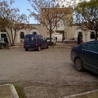 Photo taken at Cimetière El Jallaz by Ouss_ on 11/18/2011
