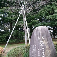 Photo taken at なんじゃもんじゃの木 (ひとつばたご) by npao on 3/18/2018