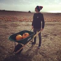Photo taken at Bob's Pumpkin Patch by Melissa M. on 10/25/2014