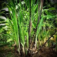 Photo taken at Honua Lani Gardens Kauai by Jai R. on 4/22/2013