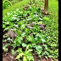 Photo taken at Honua Lani Gardens Kauai by Jai R. on 5/4/2013