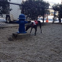 Photo taken at SFO Pet Relief Area by MarcAntony on 9/22/2014