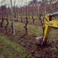 Photo taken at calosso azienda agricola by Stefano C. on 11/24/2012