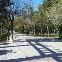 Parque de san roque parque en guadalajara for Piscina municipal san roque
