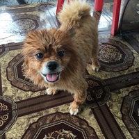 Photo taken at dog dog around by Pui N. on 6/26/2016