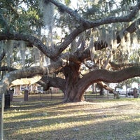 Photo taken at Safety Harbor Big Tree by Cathie S. on 2/9/2013