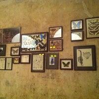 Снимок сделан в EM пользователем Yana P. 11/16/2012