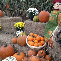 Photo taken at Pumpkin Patch @ The Markets at St Johns Town Center by EastCoast L. on 10/20/2012