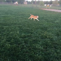 Photo taken at Overlook Dog Park by Mike R. on 4/29/2017