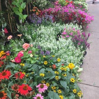 Photo taken at Flower District by David S. on 7/19/2017
