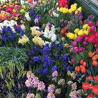 Photo taken at Flower District by David S. on 4/13/2017