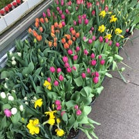 Photo taken at Flower District by David S. on 3/28/2017