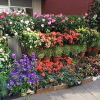 Photo taken at Flower District by David S. on 5/3/2017