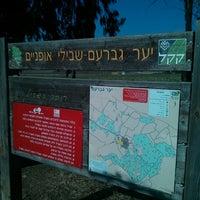 Photo taken at יער גברעם by Hagai P. on 7/20/2013