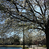 Photo taken at Byrd Park Boat (Fountain) Lake by Michele L. on 4/1/2013