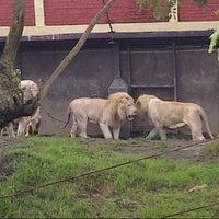 Photo taken at Batu Secret Zoo by friensca A. on 1/27/2013