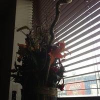 Снимок сделан в Три Стихии пользователем Yaskrava 4/9/2013