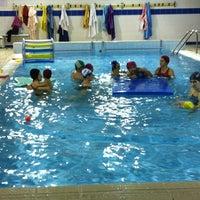 piscina comunale di nichelino piscina