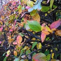 Photo taken at Kanervakuja by Pauliina M. on 10/14/2012