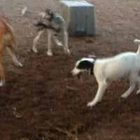 Photo taken at Orianna Hill Dog Park by Dr. P. on 5/16/2013