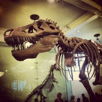 Foto tomada en Museo Americano de Historia Natural por Dana A. el 7/25/2013
