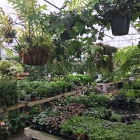 Photo taken at The Great Big Greenhouse by Deniz E. on 5/21/2017