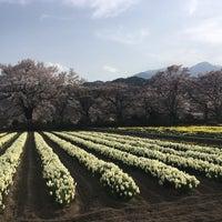 Photo taken at 実相寺 by かわ さ. on 4/1/2018