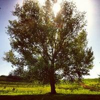 10/20/2012にPaolo C.がParco Regionale dell'Appia Anticaで撮った写真