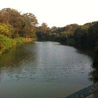 Photo taken at Lago das Garças by Camila R. on 3/31/2013
